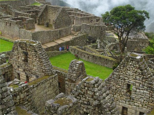 Trekking Camino Inca 2021